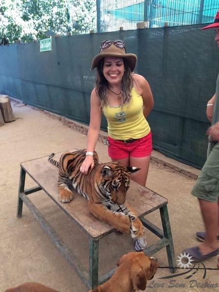 zoo lujan - cachorro - tigre - argentina - buenos aires - caminito
