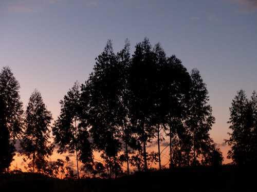 59fa88a7e 6 Razões para você assistir ao pôr do sol! | Leve Sem Destino