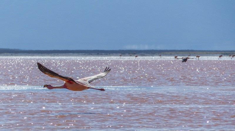 Travessia do Salar de Uyuni, 1º dia