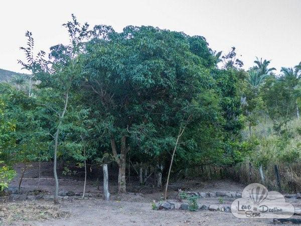 cachoeira do label - sao joao dalianca - chapada dos veadeiros (26)